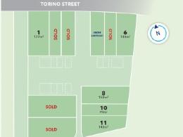 Torino Street_Auckland South (1)